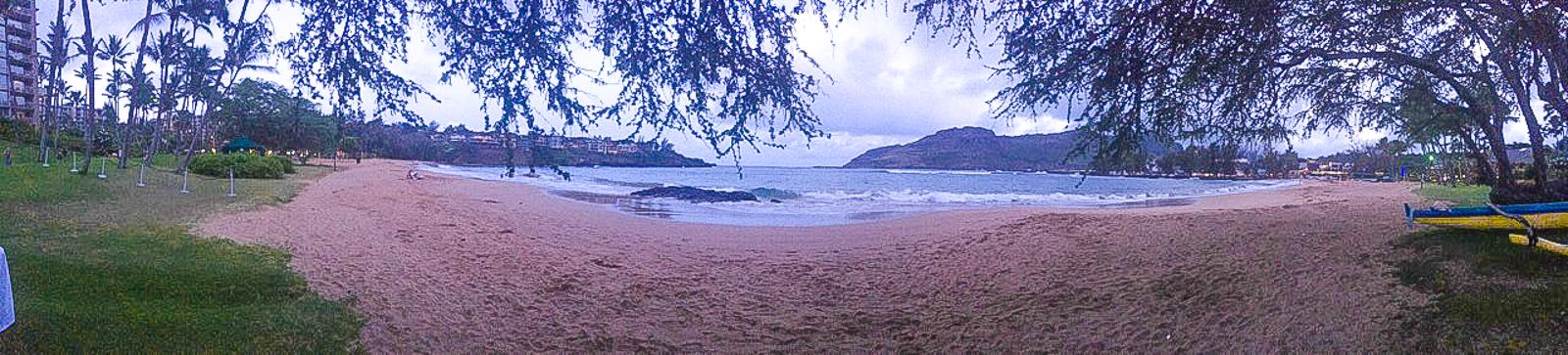 HawaiiPhone-11