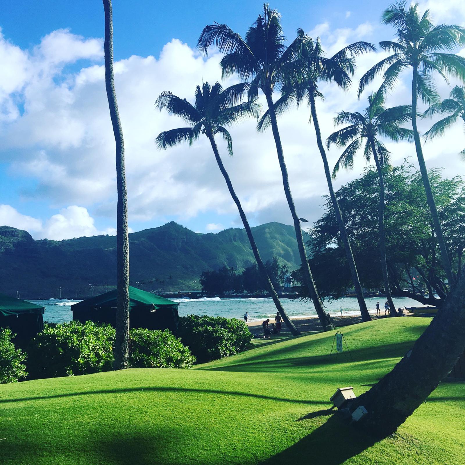 HawaiiPhone-28